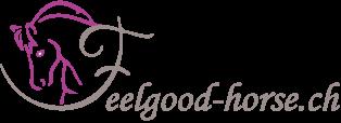 Magnetfeld-Therapie by Hofmag Logo